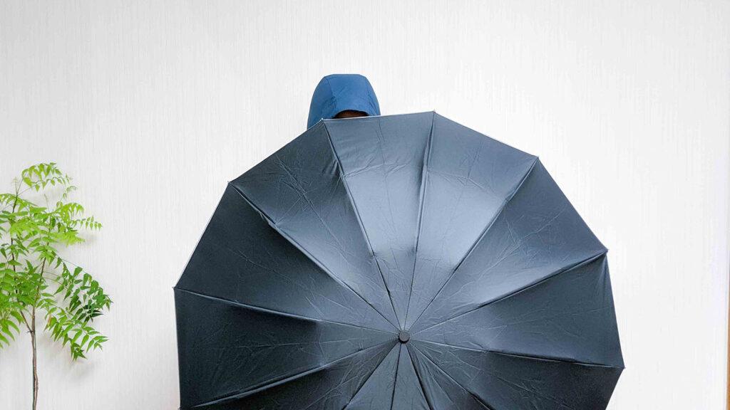 傘を差した様子02